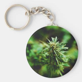 Flower cannabis basic round button keychain