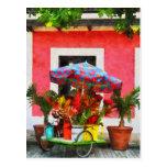 Flower Cart San Juan, Puerto Rico Post Card