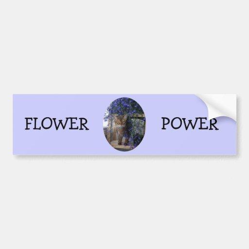 Flower Cat (oval) Bumper Sticker