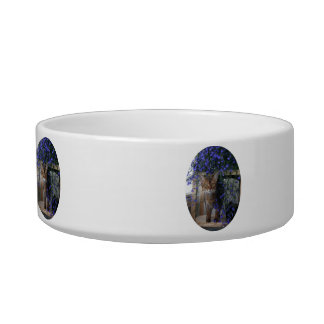 Flower Cat Oval Cat Bowl