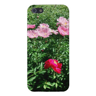 Flower Cellphone Case iPhone 5 Cover