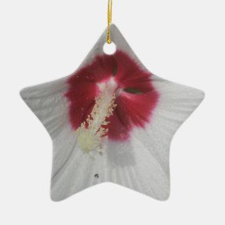 Flower Close Up Ceramic Star Ornament