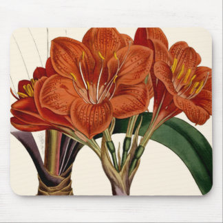 Flower Curtis Botanical Tote Mouse Pad
