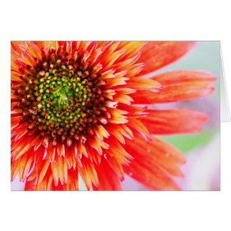 Flower Delight Blank Card