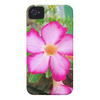 Flower Floral Tropical Pink 12320 iPhone 4 Case-Mate Case