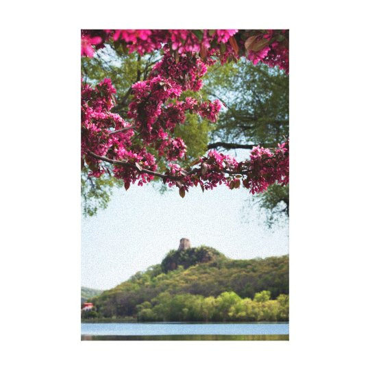 "Flower Framed Sugarloaf 12x18""  .75"" Canvas Print"