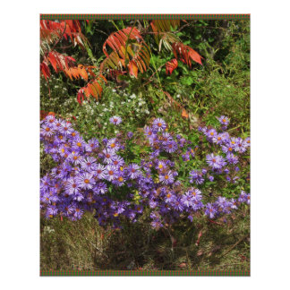 Flower Gallery Goodluck Greetings Bestwishes GIFTS Perfect Poster