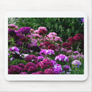 Flower Garden in summer Mouse Pad