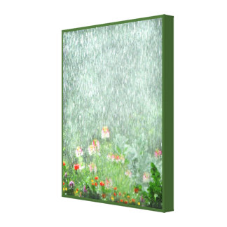Flower Garden in the Rain Canvas Print