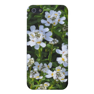 Flower Garden iPhone Speck Case iPhone 5/5S Cover