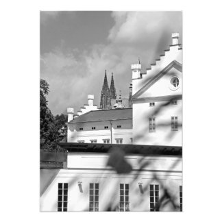 Flower. House of white stone and Prague Castle Photo Print