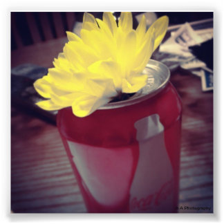 Flower in Can Photo Art