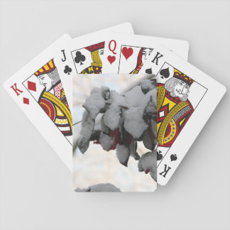 flower in snow playing cards