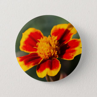 flower in the garden 2 inch round button
