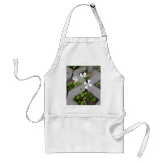 Flower in the parking lot standard apron