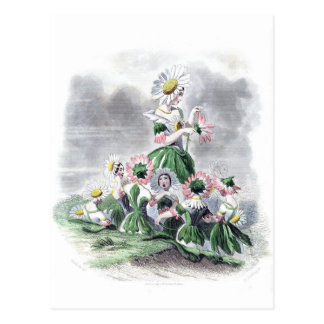 Flower Ladies Daisy Animated Flowers Grandville Postcard