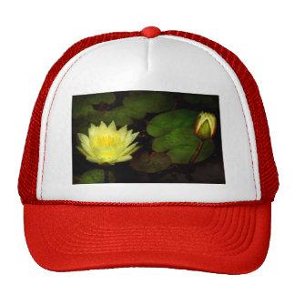 Flower - Lily - Morning showers Trucker Hat