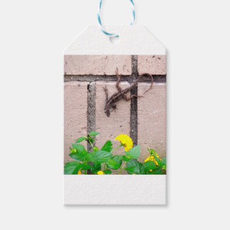 FLOWER LIZARD GIFT TAGS