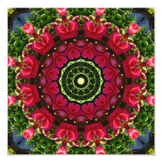 Flower Mandala, Red blossoms with hearts Photo Print