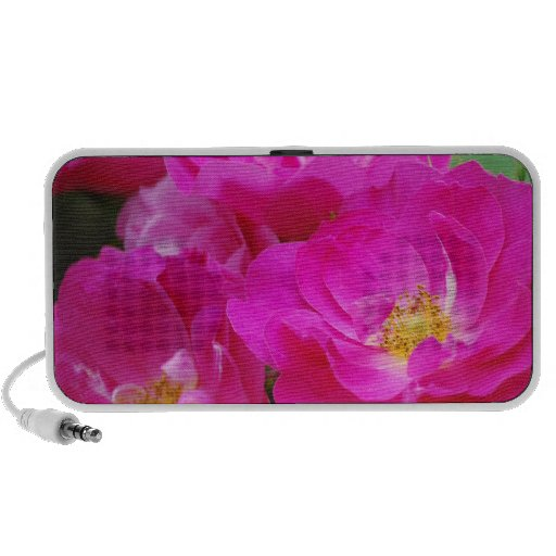 Flower mf  50 laptop speaker