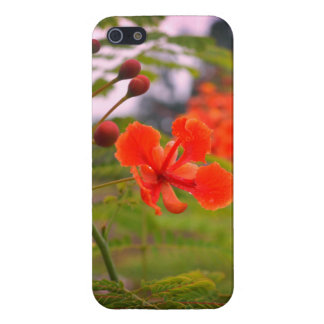 Flower Nature Case For iPhone 5/5S