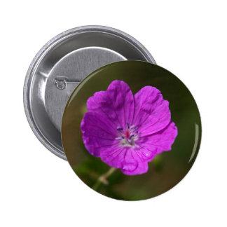 Flower of a bloody geranium 2 inch round button