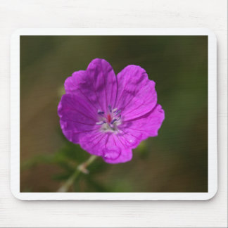 Flower of a bloody geranium mouse pad