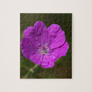 Flower of a bloody geranium puzzle