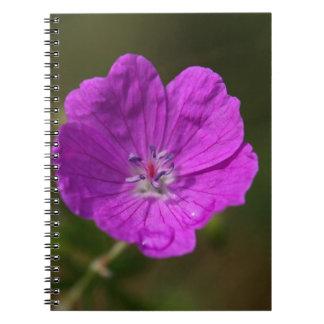 Flower of a bloody geranium spiral notebook