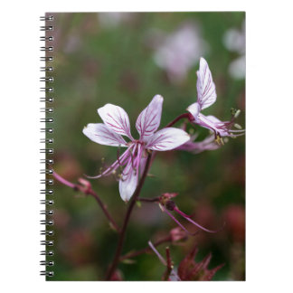 Flower of a burning bush spiral note book