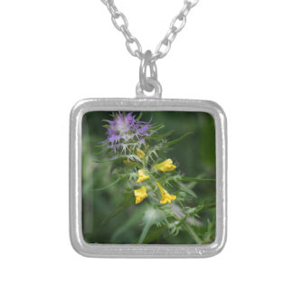 Flower of a crested cow wheat silver plated necklace