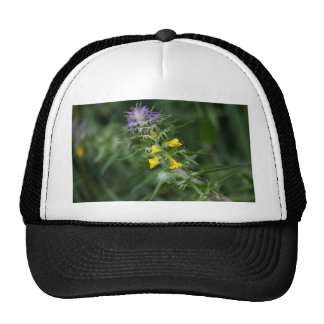 Flower of a crested cow wheat trucker hat
