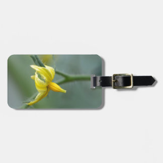 Flower of a Cucumber  plant Bag Tag