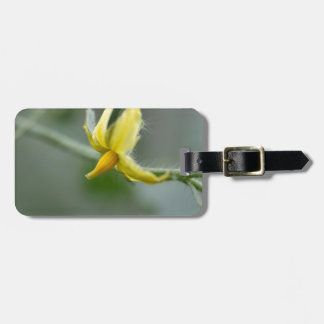 Flower of a Cucumber  plant Luggage Tag