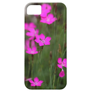 Flower of a maiden pink iPhone 5 cases