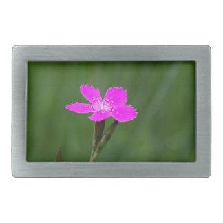 Flower of a maiden pink rectangular belt buckle