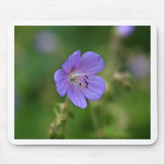 Flower of a meadow geranium mouse pad