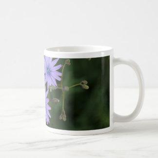 Flower of a mountain lettuce coffee mug