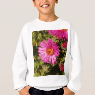 Flower of a New England aster Sweatshirt