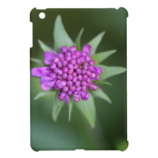 Flower of a Scabiosa lucida iPad Mini Case