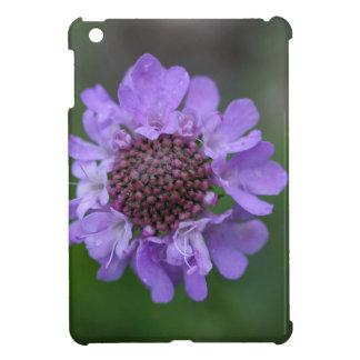 Flower of a Scabiosa lucida iPad Mini Cases