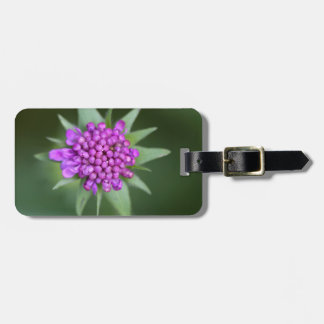 Flower of a Scabiosa lucida Luggage Tag