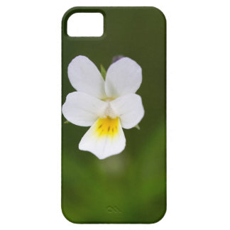 Flower of a wild field pansy iPhone 5 covers