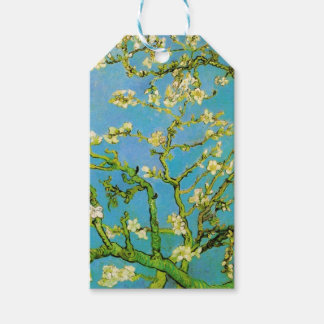Flower of Almond tree Gift Tags
