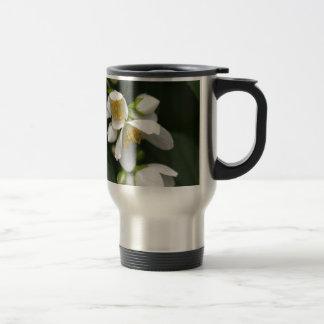 Flower of an English dogwood bush Travel Mug
