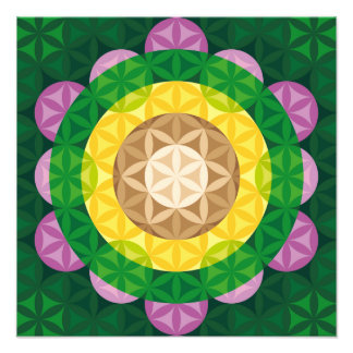 Flower of Life Photograph