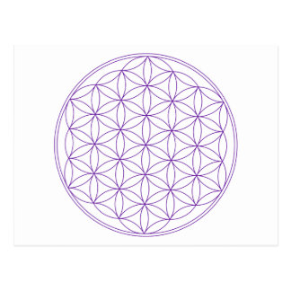 Flower of Life Violet Postcard