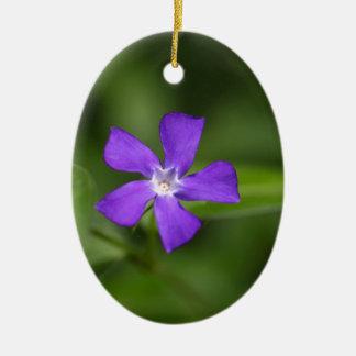 Flower of the bigleaf periwinkle (Vinca major). Ceramic Oval Ornament