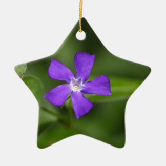 Flower of the bigleaf periwinkle (Vinca major). Ceramic Star Ornament