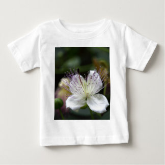 Flower of the caper bush, Capparis spinos. Baby T-Shirt